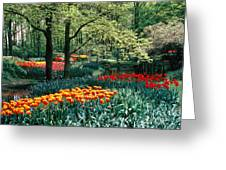 Holland Kuekenhof Garden Greeting Card
