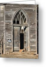 Holy Haven For Cats Greeting Card