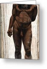 Homo Heidelbergensis Greeting Card