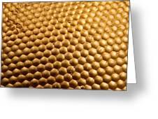 Honey Bee Eye Greeting Card