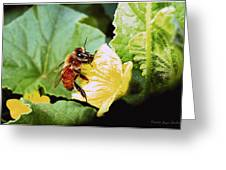 Honeybee And Cantalope Greeting Card