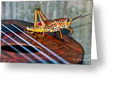 Hopper On A Uke Greeting Card