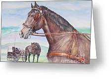 Horse And Cart Greeting Card