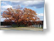 Horse Barn Hill In Autumn Greeting Card