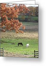 Horse Barn Hill Pasture Greeting Card