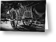 Horse Cart Greeting Card by Thanh Tran
