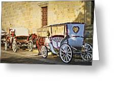 Horse Drawn Carriages In Guadalajara Greeting Card