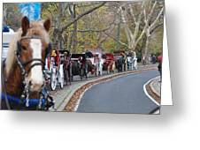 Horse-drawn Carriages Greeting Card