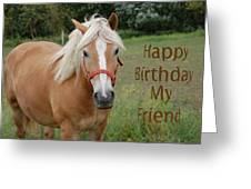 Horse Friend Birthday Greeting Card