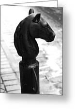Horse Head Pole Hitching Post French Quarter New Orleans Black And White Diffuse Glow Digital Art Greeting Card