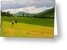 Horse Heaven Greeting Card