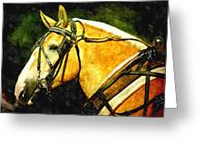 Horse In Paint Greeting Card