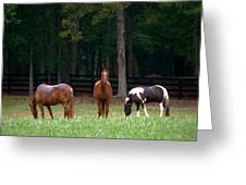 Horse Landscape Greeting Card