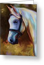 Horse Of Colour Greeting Card