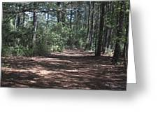 Horse Path Greeting Card