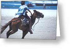 Horse Race In Brazil Greeting Card