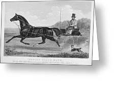 Horse Racing, C1850 Greeting Card