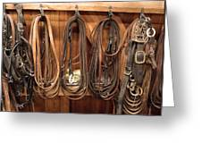 Horse Tack And Reins Greeting Card