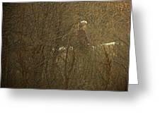 Horseback In The Garden Greeting Card by Lenore Senior