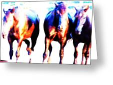 Horses-30 Greeting Card