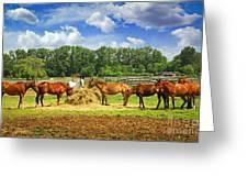 Horses At The Ranch Greeting Card