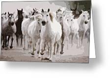 Horses Galloping Greeting Card