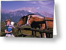 Horses In Switzerland Greeting Card