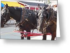 Horses Of Mackinac Greeting Card