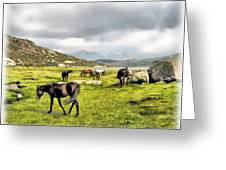 Horses Of Wyoming Greeting Card