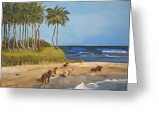 Horses On The Beach Greeting Card