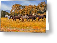 Horses Running Free Greeting Card