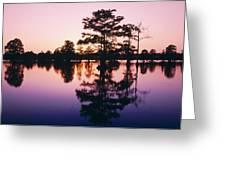 Horseshoe Lake At Dusk Greeting Card