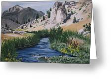 Hot Creek Greeting Card