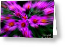 Hot Pink And Green Greeting Card