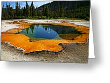 Hot Springs Yellowstone Greeting Card