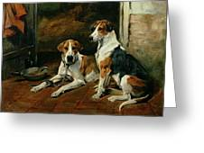 Hounds In A Stable Interior Greeting Card