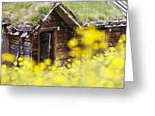 House Behind Yellow Flowers Greeting Card