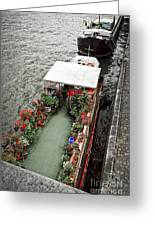 Houseboats In Paris Greeting Card by Elena Elisseeva