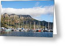 Hout Bay Harbour Greeting Card