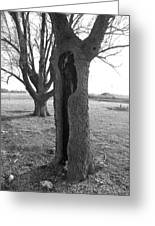 Howling Tree Greeting Card