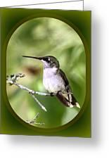 Hummingbird - Gold And Green Greeting Card