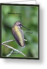 Hummingbird - Thinking Of You Greeting Card