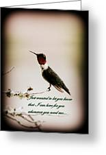 Hummingbird - Cards Greeting Card
