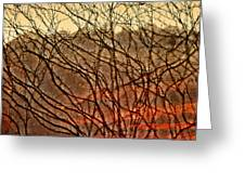 Hungry Vines Greeting Card