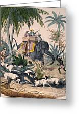 Hunting: Big Game, 1852 Greeting Card