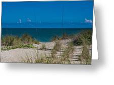 Hutchinson Island Heaven Greeting Card by Trish Tritz