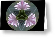 Hyacinth Kaleidoscope Greeting Card
