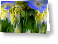 Hydrangea Fantasy Greeting Card