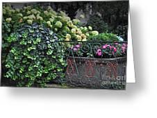 Hydrangeas Salzburg Greeting Card