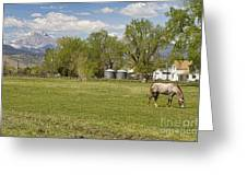 Hygiene Colorado Boulder County Scenic View Greeting Card